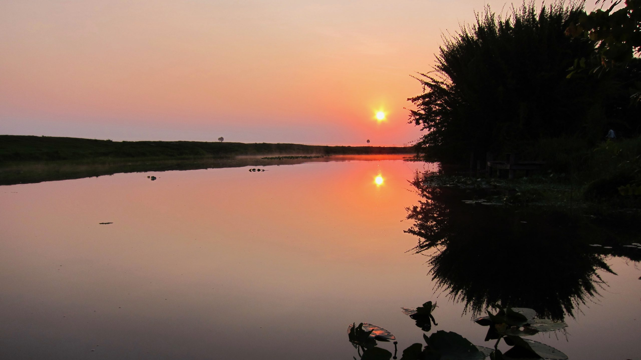 フロリダ州キシミー川の風景