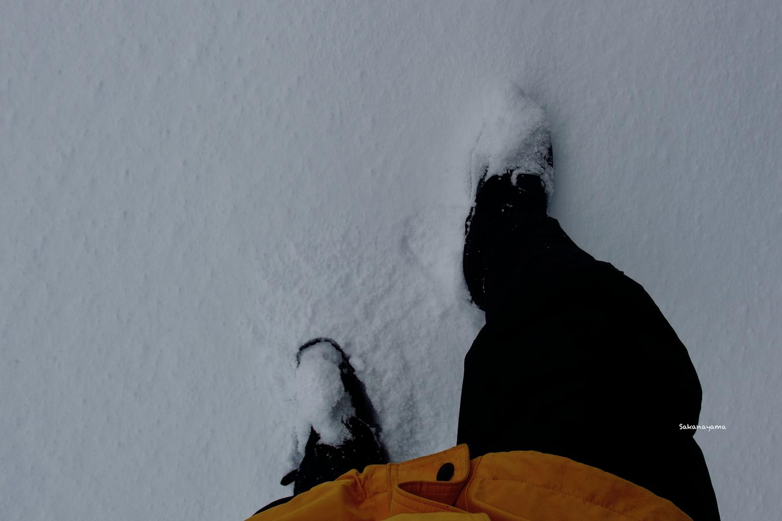 ひとり雪山を歩く